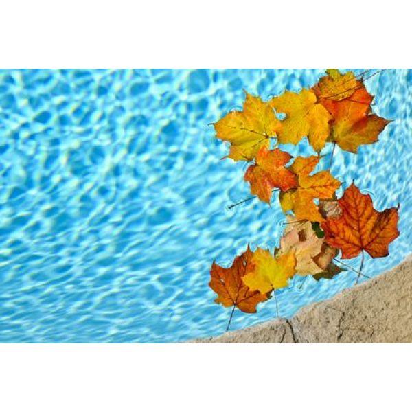 L'automne arrive….